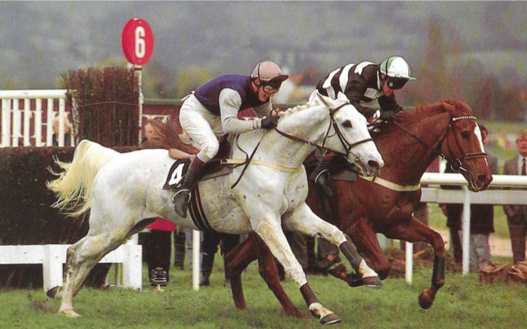 A white horse races down the track